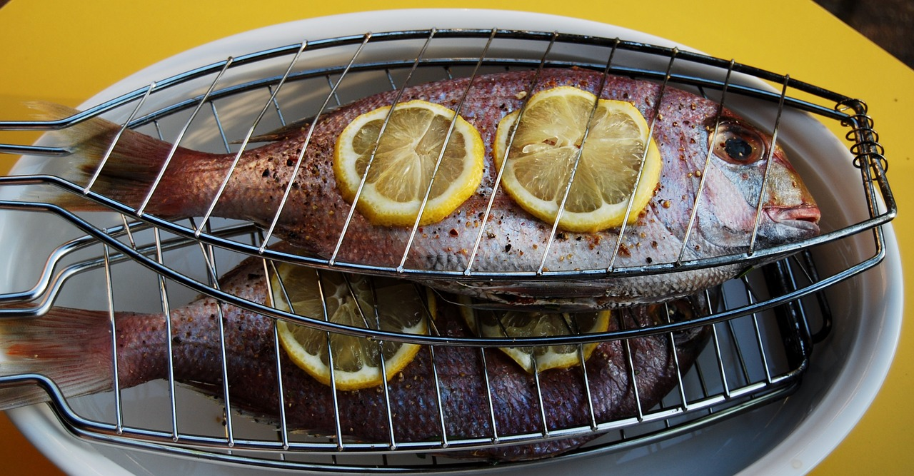 sea-bream-808179_1280